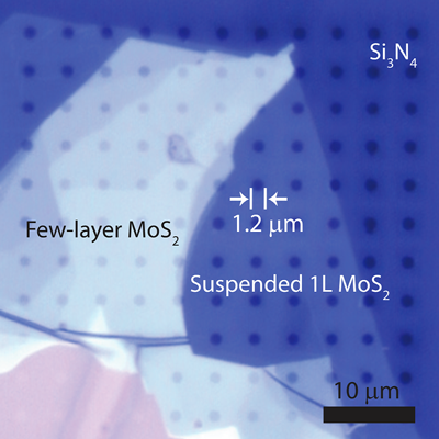 Optical micrograph of exfoliated molybdenum disulfide on a perforated grid.