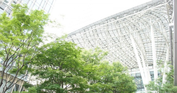 The Big Canopy of Tokyo Midtown uses glass coated with titanium dioxide photocatalyst. © 2014 The University of Tokyo.