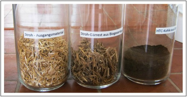 Raw straw feedstock, anaerobically digested straw and biochar produced after hydrothermal carbonization. Image courtesy of the researchers.