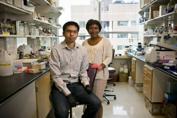 MIT professor Paula Hammond (right) and Bryan Hsu PhD' 14 have developed a nanoscale film that can be used to deliver medication, either directly through injections, or by coating implantable medical devices. Photo: Dominick Reuter