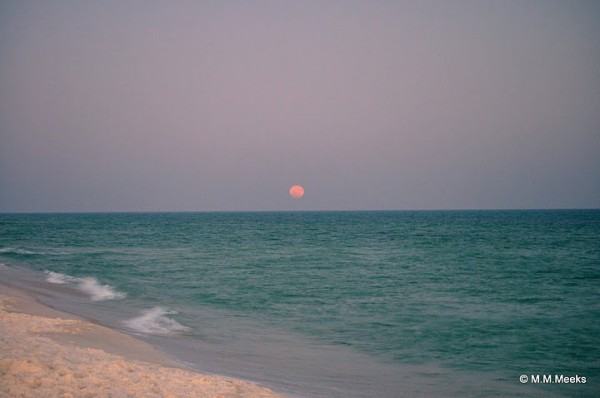 The Moon over Gulf Islands National Seashore near Navarre Beach, Florida. Credit: Mindi Meeks.