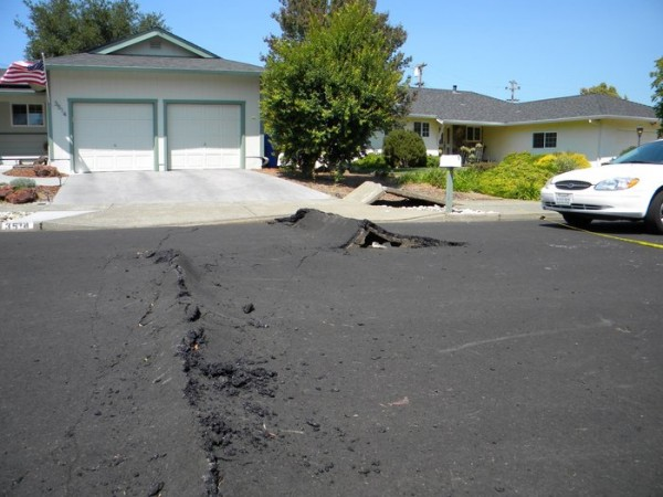 Fault damage in the suburbs west of Napa, California from the 6.0 magnitude earthquake that struck on 24 August. The fault rupture ran through homes and across roads, buckling the tarmac surface and pavements, resulting in damage expected to cost hundreds of millions of dollars. Copyright A. Elliott–UC Davis