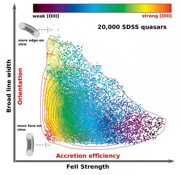 This graph shows the distribution of about 20,000 luminous Sloan Digital Sky Survey quasars in the two-dimensional space of broad line width versus FeII strength, color-coded by the strength of the narrow [OIII] line emission. The strong horizontal trend is the main sequence of quasars driven by the efficiency of the black hole accretion, while the vertical spread of broad line width is largely due to our viewing angle to the inner region of the quasar.