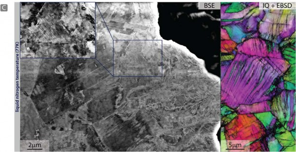 At 77K, back‐scattered electron images taken in the wake of a propagated crack show the formation of pronounced cell structures resulting from dislocation activity that includes deformation‐induced nano‐twinning. (Courtesy of Ritchie group)