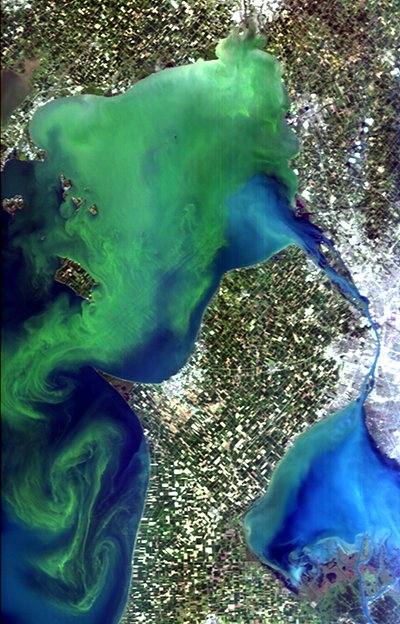 A Hyperspectral Imager for the Coastal Ocean (HICO) image of a massive Microcystis bloom (shown in green) in western Lake Erie, Sept. 3, 2011, as confirmed by spectral analysis. Image Credit: Curtiss Davis/Oregon State University