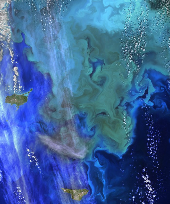 Phytoplankton bloom (green and blue swirls) near the Pribilof Islands off the coast of Alaska, in the Bering Sea. The turquoise waters are likely colored by a type of phytoplankton called coccolithophores. This Sept. 22, 2014, image was created with Landsat 8 data. Image Credit: NASA's Goddard Space Flight Center, Norman Kuring; USGS