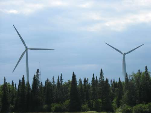 turbines_and_forest_2_-_photo_by_Paul_Cryan