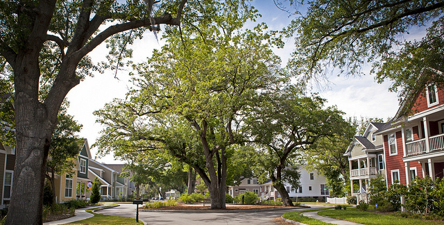 Picture: Green Neighbourhood. Image credit: North Charleston via Flickr, CC BY-SA 2.0.