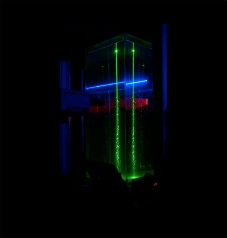 Based on preliminary tests with newly hatched A. salina, a laboratory apparatus was designed to induce controllable collective vertical motion of A. salina. Here, the multi-laser guidance system is shown in operation during a vertical migration experiment. Individual organisms are visible as motile particles in the region illuminated by the green laser, as they swim vertically following the blue laser beam. Credit: M. M. Wilhelmus and J. O. Dabiri/Caltech