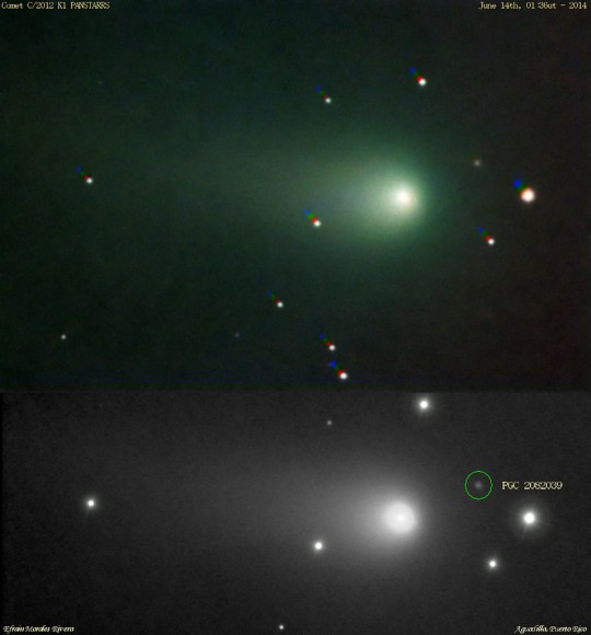 Comet K1 PanSTARRS imaged on June 14th. Credit: Efrain Morales.