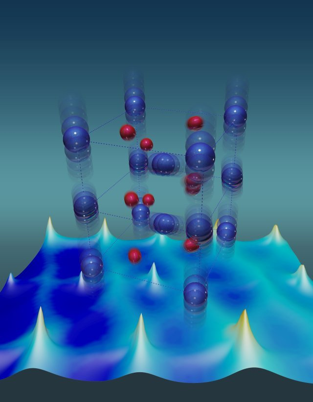 Vanadium atoms (blue) have unusually large thermal vibrations that stabilize the metallic state of a vanadium dioxide crystal. Red depicts oxygen atoms. Image credit: Oak Ridge National Laboratory