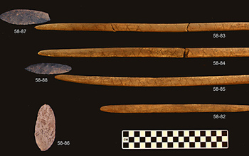 Artifacts from the burial site, include stone projectile points and antler foreshafts. Credit: Ben Potter, University of Alaska, Fairbanks