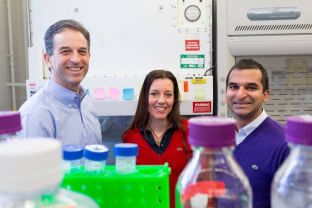 Left to right: Ron Weiss, professor of biological engineering; Domitilla Del Vecchio, associate professor of mechanical engineering; and Deepak Mishra, MIT graduate student in biological engineering. Photo: Brian Teague