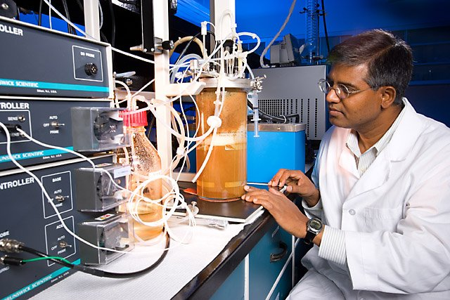 At the ARS Bioenergy Research Unit in Peoria, Illinois, chemical engineer Nasib Qureshi observes and controls a fermentor in which butanol is produced from corn stover and recovered simultaneously with a vacuum. Photo by Scott Bauer.