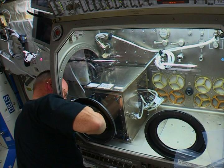 Commander Barry WIlmore works on Monday to install a 3D printer inside the Destiny laboratory's Microgravity Science Glovebox. Credit: NASA TV