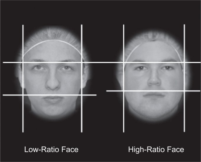 World Cup soccer players with higher facial-width-to-height ratios are more likely to commit fouls, score goals and make assists, according to a study by a researcher at the University of Colorado Boulder. Photo courtesy of Keith Welker