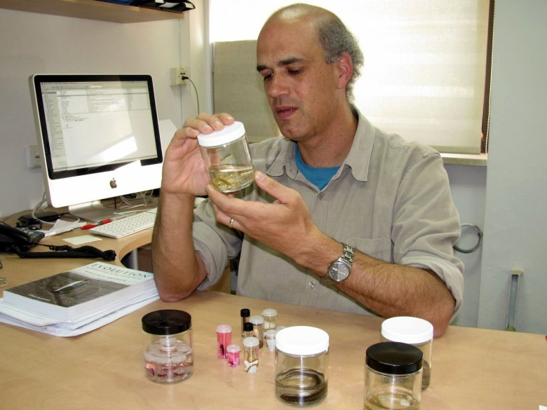 Study co-author Prof. Ariel Chipman holds a jar of centipede specimens in his office at the Hebrew University of Jerusalem. (Photo courtesy Prof. Chipman)