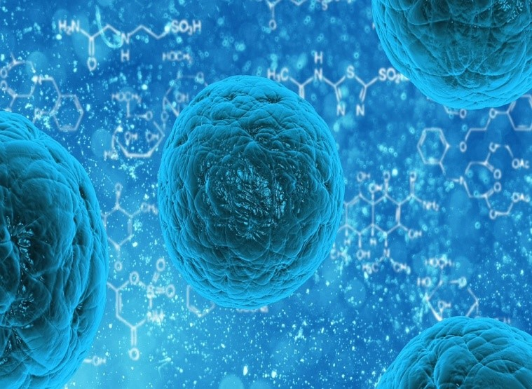 Stem cells may hold the answer to curing Parkinson's disease. Image source: pixabay.com, License: CC0 Public Domain.