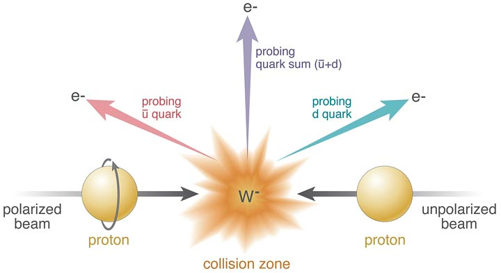 "Collisions of polarized protons (beam entering from left) and unpolarized protons (right) result in the production of W bosons (in this case, W-). RHIC's detectors identify the particles emitted as the W bosons decay (in this case, electrons, e-) and the angles at which they emerge. The colored arrows represent different possible directions, which probe how different quark flavors (e.g., ""anti-up,"" u and ""down,"" d) contribute to the proton spin."