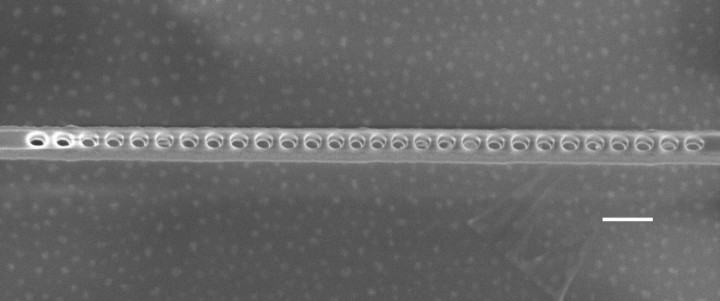 A scanning electron microscope image of the diamond photonic cavity shows the nanoscale holes etched through the layer containing NV centers. The scale bar indicates 200 nanometers. Image credit: Evelyn Hu/Harvard