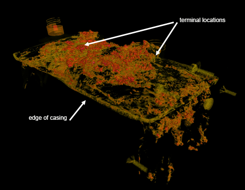 In NIST's neutron CT scans, the battery cells were rotated in the neutron beam, and radiographs were acquired at several angles. The data were reconstructed into 3D volumetric images. This image was made from data on cell number 5, one of two that failed. Areas of high neutron attenuation are shown in orange, red, or pink (pink is the highest). The electrical insulation between the terminals and the casing has been badly damaged by the fire, and there is no evidence of a lithium deposit connecting the terminals to the battery casing.