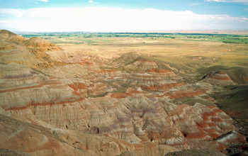 Banded sedimentary rocks in the Willwood formation in Wyoming were sampled to look into the past. Credit: Scott Wing