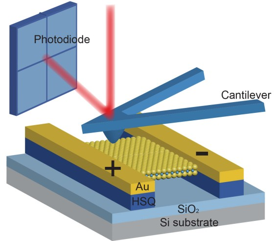 To measure in-plane piezoelectric stress, an MoS2 film was suspended on HSQ posts and clamped by two Au electrodes. When the film was indented with a scanning AFM probe, the induced stress changed the load on the cantilever, which was observed by the deflection of a laser beam.