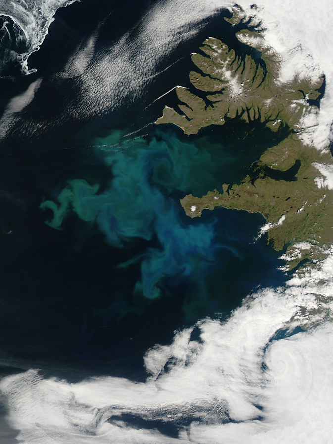 North Atlantic phytoplankton bloom off the coast of Iceland, June 24, 2010. Image Credit: NASA's Earth Observatory