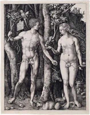 Picture: Adam and Eve by Albrecht Dürer. Source: The Morgan Library & Museum
