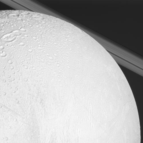 A close look at Enceladus, with Saturn's rings in the background. Credit: NASA/JPL/Space Science Institute