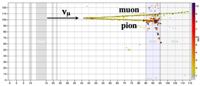 This MINERvA event display shows a coherent pion production candidate interaction. The neutrino enters the detector from the left and interacts with a nucleus, producing a muon and a pion. The colors indicate the amount of energy deposited at that point. Image credit: Fermilab