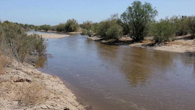 Water flows down the typically dry riverbed of the Lower Colorado River during the March 2014 pulse flow. While most of the water seeped into the ground in the first 37 miles below the Morelos Dam, the flow still reached the Sea of Cortez for the first time since 2000. Image Credit: Andrew Quinn & Owen Bissell