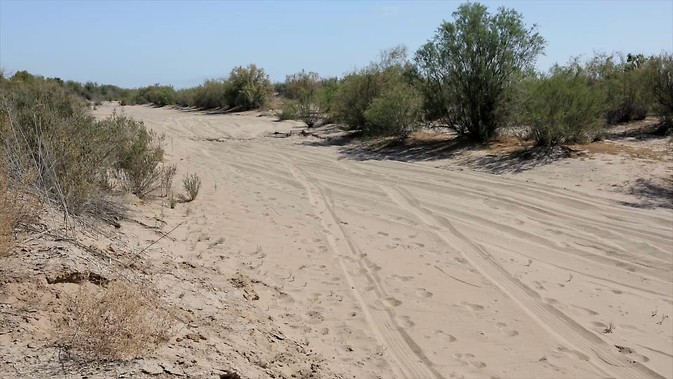 riverbed_before