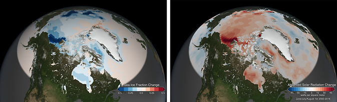 The Arctic Ocean is absorbing more of the sun's energy in recent years as white, reflective sea ice melts and darker ocean waters are exposed. The increased darker surface area during the Arctic summer is responsible for a 5 percent increase in absorbed solar radiation since 2000. Image Credit: NASA Goddard's Scientific Visualization Studio/Lori Perkins