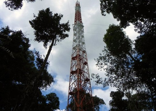 Steel giant in the rainforest: the Atto tower will deliver important climate data. © MPI for Chemistry