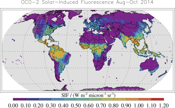 This map shows solar-induced fluorescence, a plant process that occurs during photosynthesis, from Aug. through Oct. 2014 as measured by NASA's Orbiting Carbon Observatory-2. This period is springtime in the Southern Hemisphere and fall in the Northern Hemisphere. Image Credit: NASA/JPL-Caltech