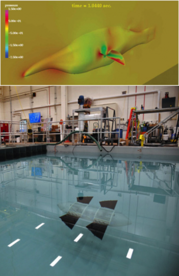 Researchers at the U.S. Naval Research Laboratory (NRL), Laboratories for Computational Physics and Fluid Dynamics, digitally modeled the geometry of the bird wrasse using computational fluid dynamics simulation then validated the data against experimental results (above). The result (below) was the development of artificial pectoral fins integrated into a man-portable, unmanned vehicle named the Wrasse-inspired Agile Near-shore Deformable-fin Automaton, or WANDA. Four side-mounted fins, two forward and two aft, provide all the propulsion and control necessary for the vehicle. (Photo: U.S. Naval Research Laboratory/Jamie Hartman)