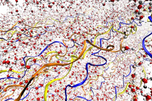 Illustrations depict the collagen fibrils, with their triple-helix structure, surrounded by water molecules. The three different chains of the triple helix are depicted in different colors. Water molecules are shown in red and gray. Courtesy of the researchers