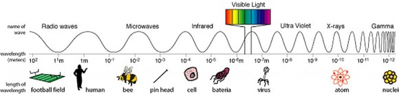 "Visible light is a sliver of light's full range of ""colors"" which span from kilometers-long, low-energy radio waves (left) to short wavelength, energetic gamma rays. It's all light, with each color determined by wavelength. Familiar objects along the bottom reference light wave sizes. Visible light waves are about one-millionth of a meter wide. Credit: NASA"