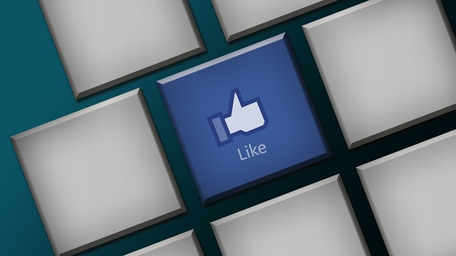 """Scientists from Cambridge University fed Facebook """"likes"""" into a computer algorithm designed to predict people's personality traits. Image credit: bykst via pixabay.com, CC0 Public Domain."""