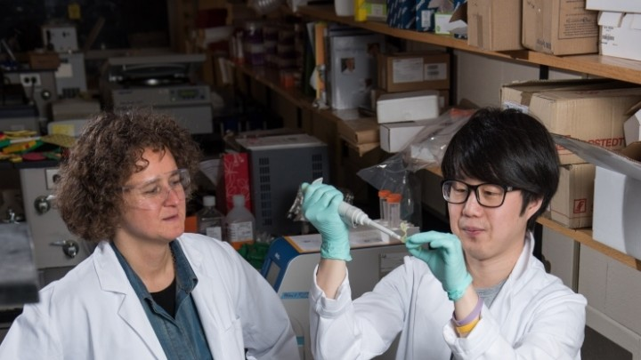 Georgia Tech Associate Professor Francesca Storici (left), Graduate Student Kyung Duk Koh and collaborators have developed and tested ribose-seq, a technique for identifying ribonucleotides in genomic DNA. (Credit: Rob Felt).