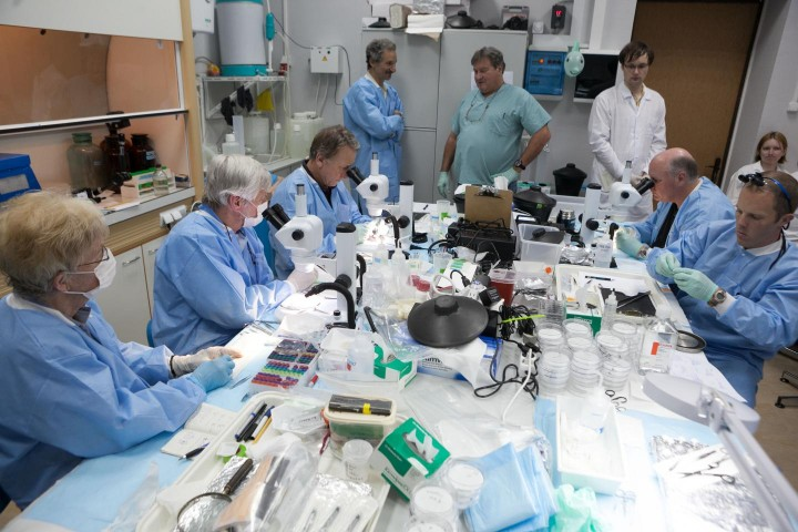 The international team of researchers worked out of a Moscow laboratory. Image credit: Courtesy of Michael Delp