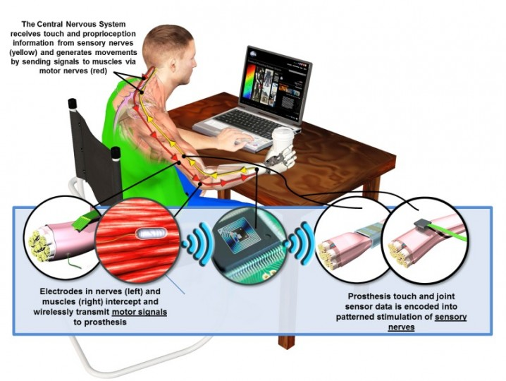 DARPA's Hand Proprioception and Touch Interfaces (HAPTIX) program aims to develop fully implantable, modular and reconfigurable neural-interface systems that would enable intuitive, dexterous control of advanced upper-limb prosthetic devices. In a major step toward achieving these goals, DARPA has awarded prime contracts for Phase 1 of HAPTIX.