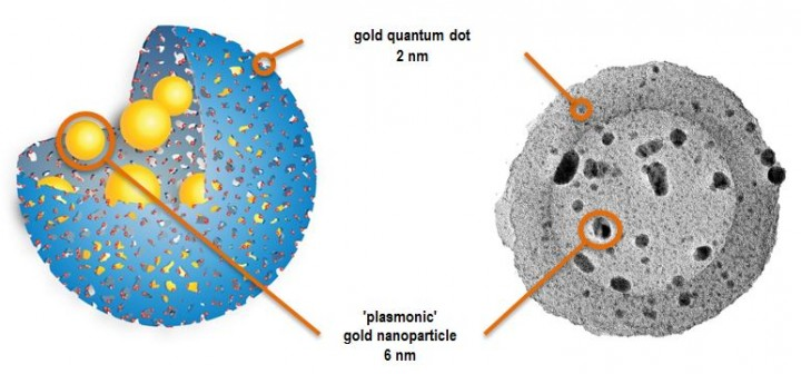 """Diagram and electronic microscopy image of a """"quantum rattle"""": a porous silica shell (in blue in the diagram) is filled with gold dots, all on a nanometric scale. Gold is present in two forms: particles smaller than 2 nm (dots) in the pores of the shell, and larger particles (7 nm) in the central cavity. © Mathew Hembury, Ciro Chiappini Glenna L. Drisko et al"""