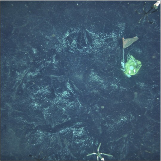 Magma from a volcanic eruption in 2006 at the East Pacific Rise, a mid-ocean ridge in the Pacific Ocean, trapped this ocean-bottom seismometer (yellow case with flag). A new study finds that the intensity of volcanic activity at deeply submerged mid-ocean ridges waxes and wanes on a roughly 100,000-year cycle. Credit: Dan Fornari and Woods Hole Oceanographic Institution