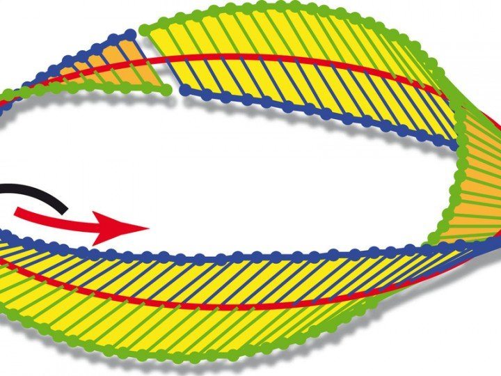 Twisted into a Möbius strip: Strong focussing can generate a Möbius strip from circularly polarised light – light which rotates about the axis of its direction of propagation. © Science 2015 / MPI for the Science of Light