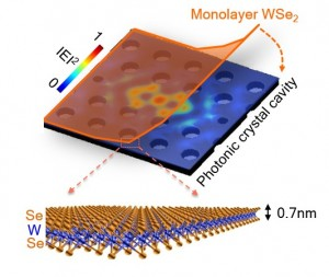 Scientists build a nanolaser using a single atomic sheet