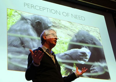 Frans de Waal: Like humans, along with aggression, chimps' behavior includes reconciliation, empathy and consolation. Image credit: Barry Bergman