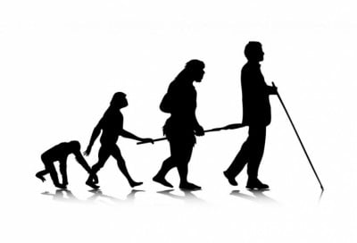 Study finds link between back pain and evolution to upright walking