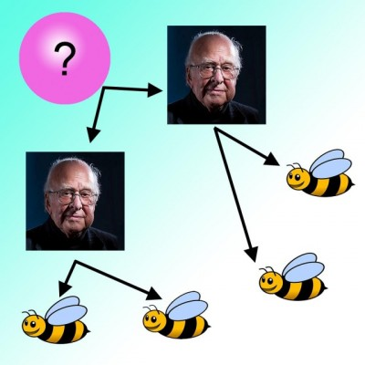 Finding pairs of Higgs bosons might be a path to discovering something entirely new. Because Higgs bosons are unstable, what experimenters really do is look for the presence of four b (bottom) quarks.